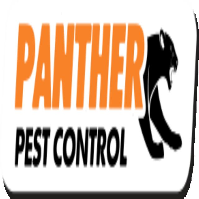 Pest Control Esher